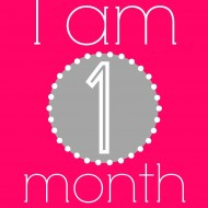 Free Hot Pink and Gray Baby Monthly Printables and Gift Idea