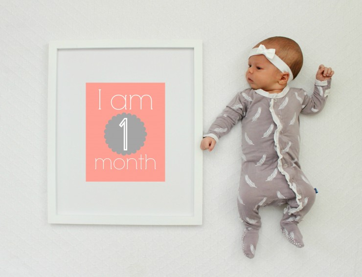 Free Hot Pink And Gray Baby Monthly Printables And Gift