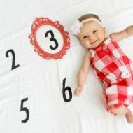 Creative Monthly Baby Picture Ideas