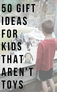 gift-idea-kid-at-zoo